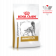 Royal Canin Veterinary Diet Dog Urinary 3 Kg