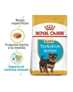Comida Royal Canin Breed Health Yorkshire-Ciudaddemascotas.com