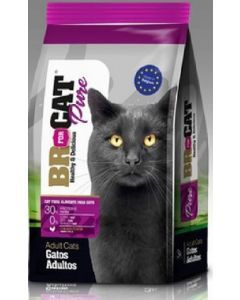 Br For Cat Gato Adulto