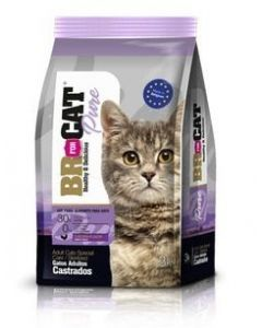 Br For Cat Gato Castrado