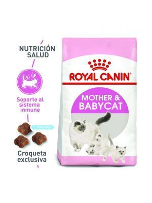 Comida Royal Canin Feline Nutrition Mother - Ciudaddemascotas.com