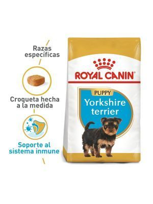 Comida Royal Canin Breed Health Nutrition - ciudaddemascotas.com